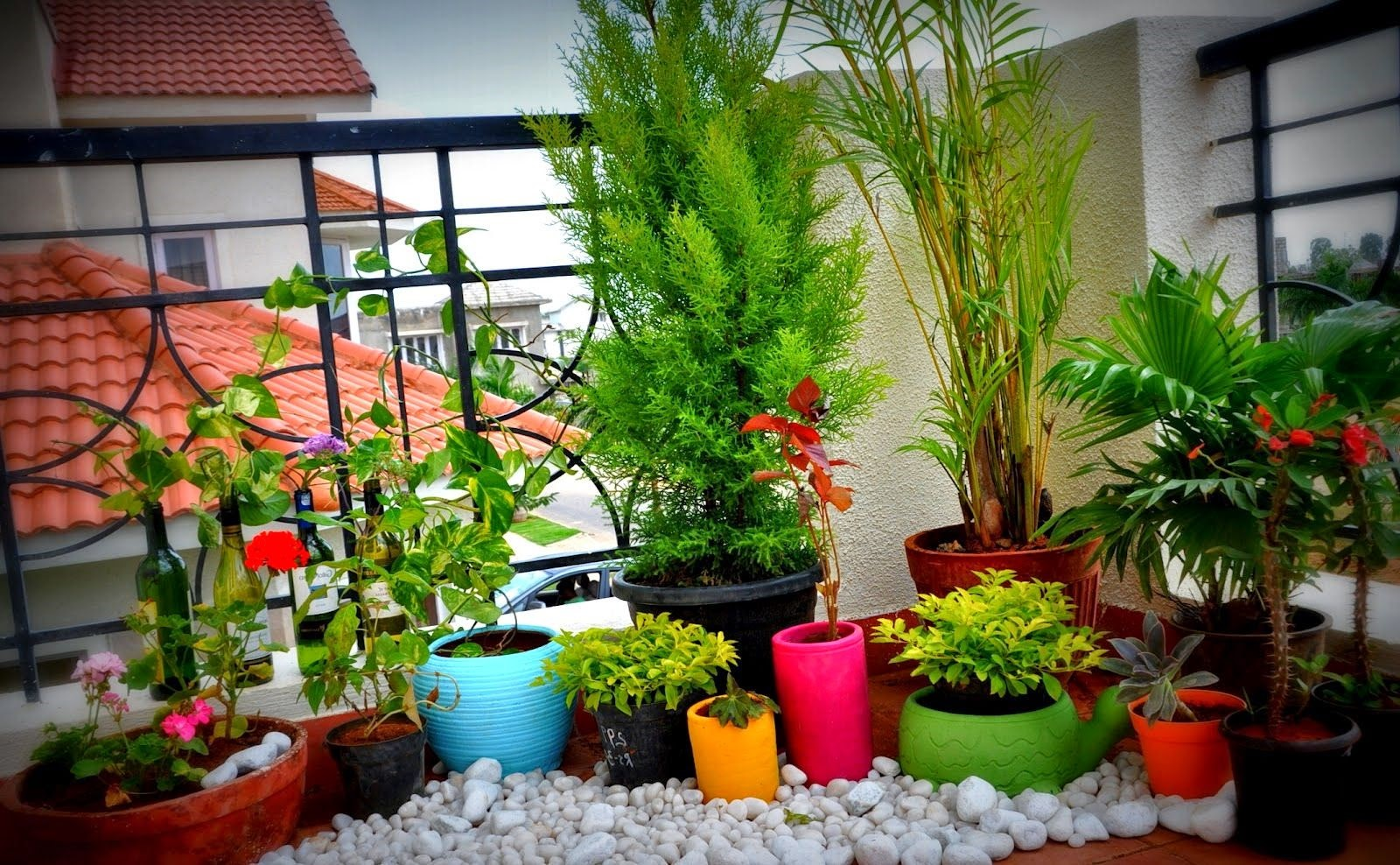 Balcony Garden Ideas For A Beautiful Home Decor - Latest Breaking