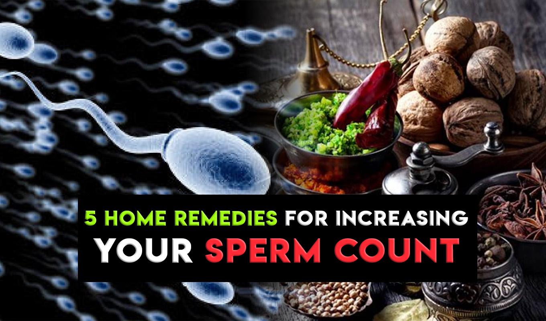 sperm produce more i How do