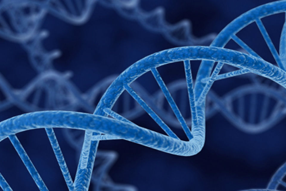AI technology detects genetic disorders