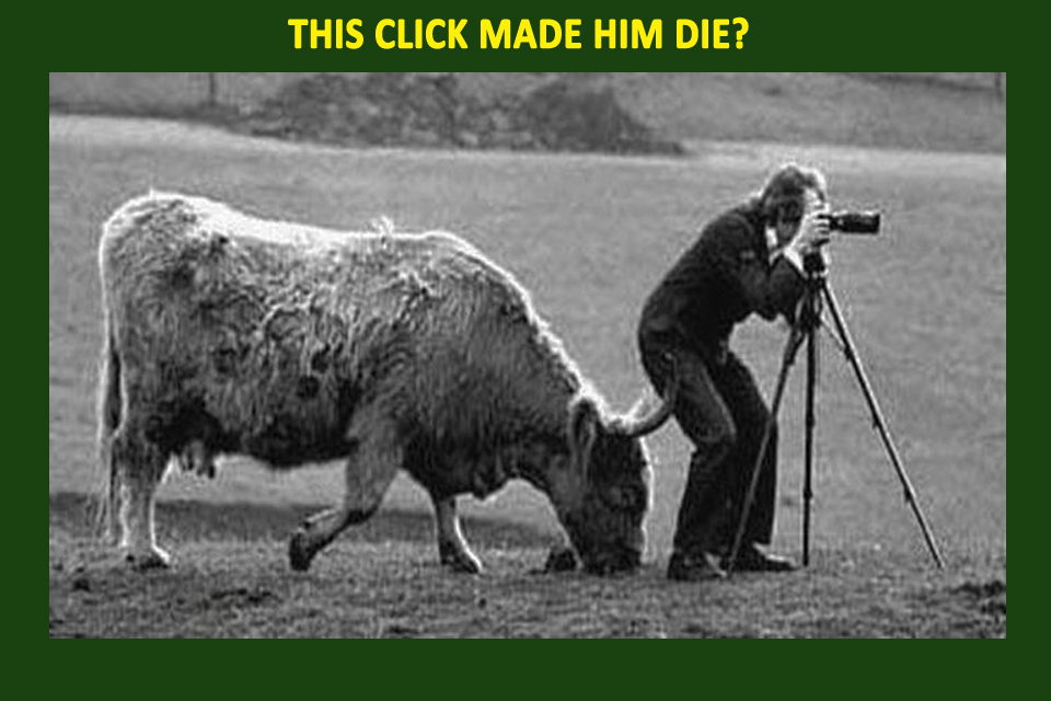 dangerous pictures